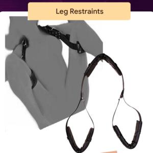 Leg Restraints